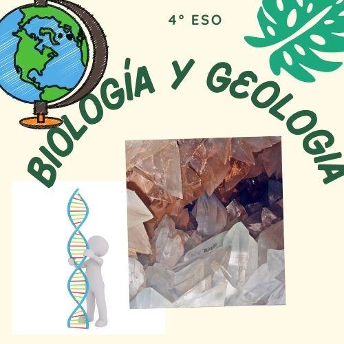 Biología y Geología 4º ESO D